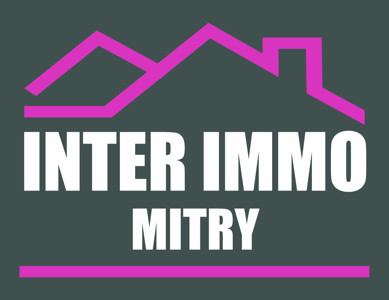 logo INTER IMMO MITRY